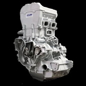 polaris RZR 1000 engine
